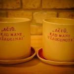 raudoni-vazonai-silko-keramika