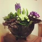 vazonas-augaliukams-biure-silko-keramika