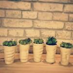 vazoniukai-augaliukams-interjeras-silko-keramika